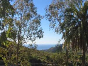 National Park of Tejeda, Almijara and Alhama