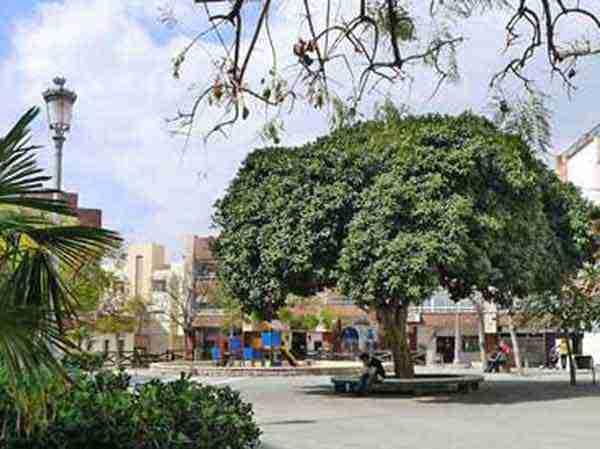 Plaza la Marina