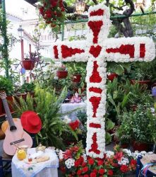 Torrox crosses of May