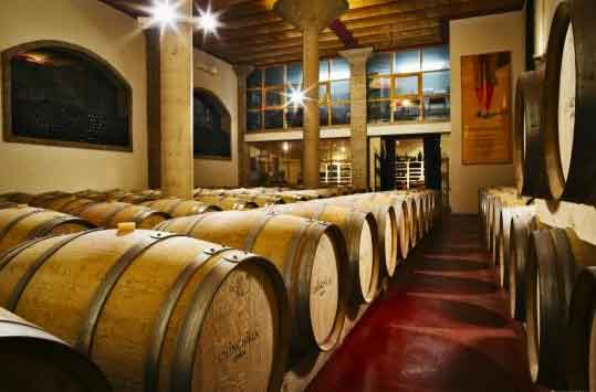 Wine tours in the Axarquia