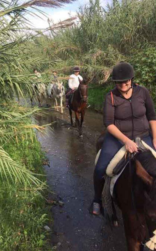 Tour Nerja on Horseback