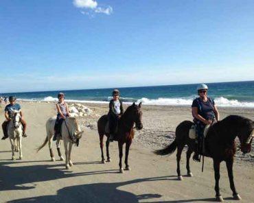 Horse-Treking-Nerja